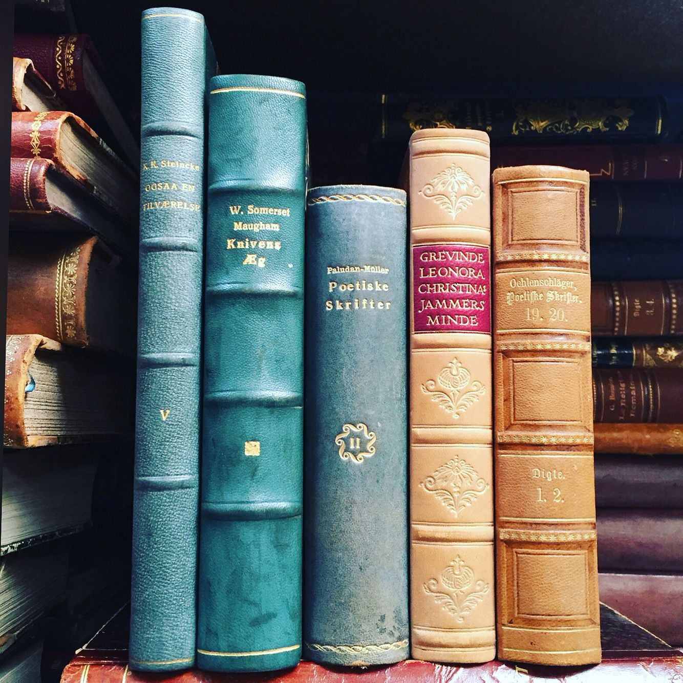 Unusual Color blue with Zen Collection books. Antique leather bound ...
