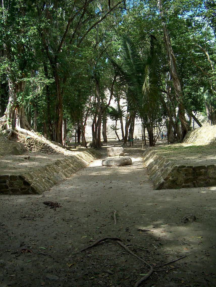 The Lamanai Archaeological Reserve is a 2-sq mile forest that encompasses the ancient Maya site of Lamanai, and is located in northern Belize
