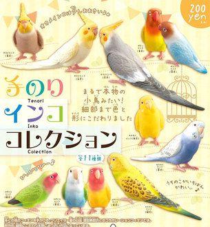Havikoro Toy Rakuten Global Market Shineg Shing Hand Glue Parrot Collection Knockout 8 Set Parrot Budgies Bird Illustration