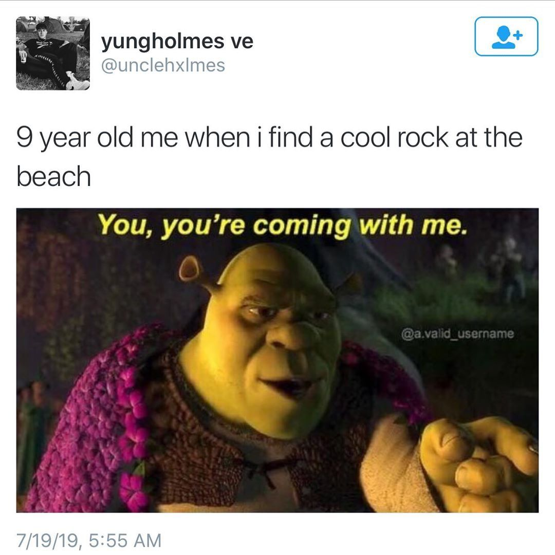 Where Are All The Rocks I Brought Home As A Kid That S The Real Mystery Really Funny Pictures Funny Relatable Memes Really Funny