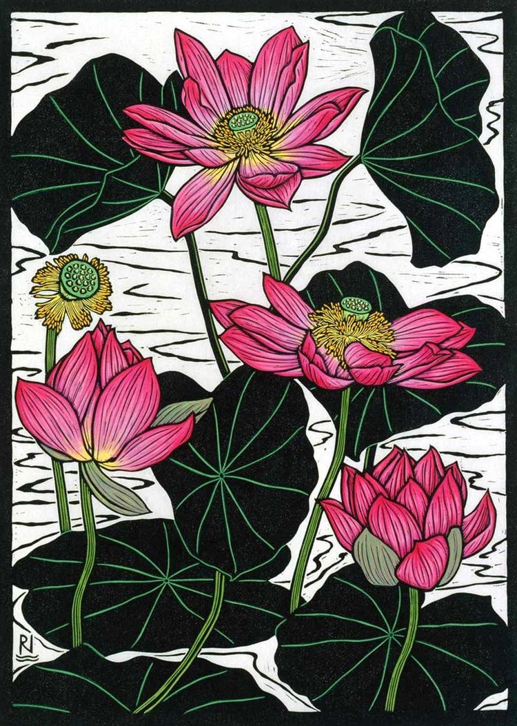 Sacred Lotus Ii 49 X 35 Cm Edition Of 50 Hand Coloured Linocut On