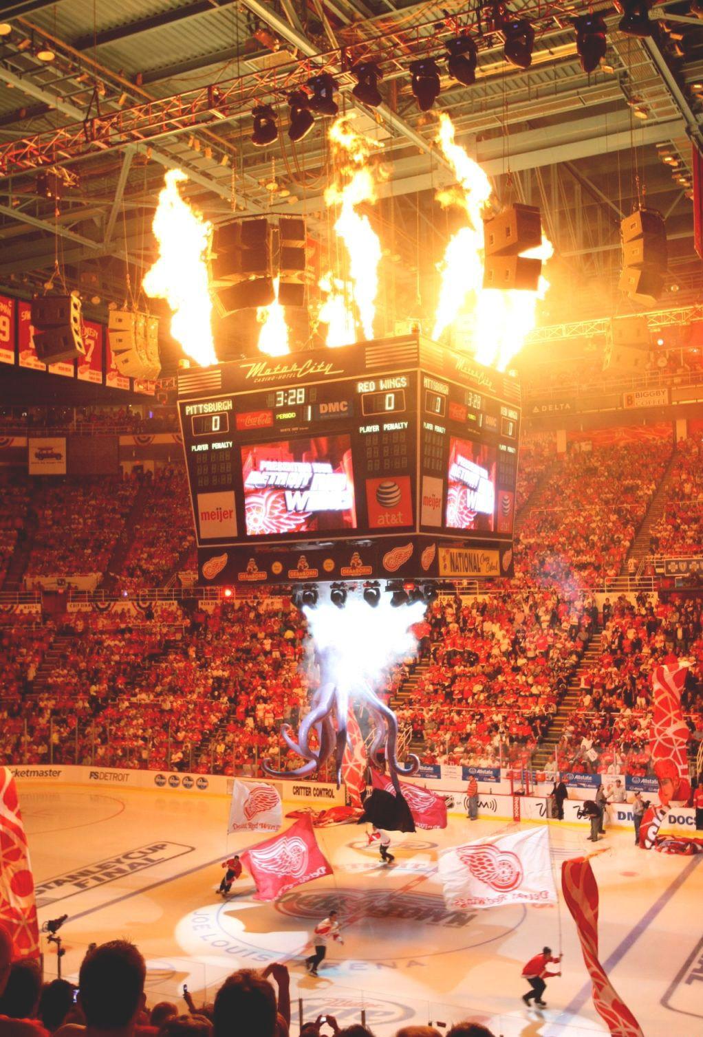 Rockin' the Joe! Red wings hockey, Detroit red wings