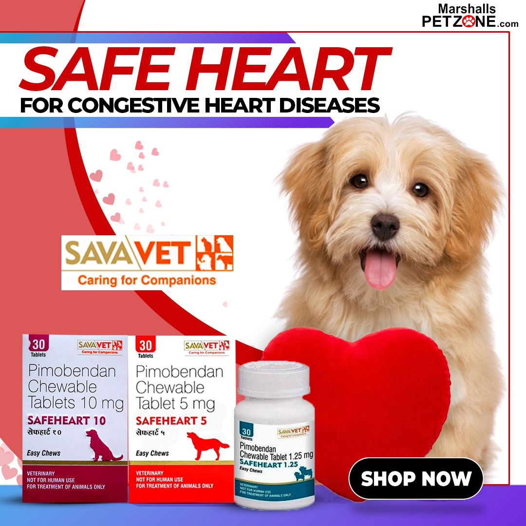 Savavet Safe Heart 10mg Dog Health Care Buy Pets Pets