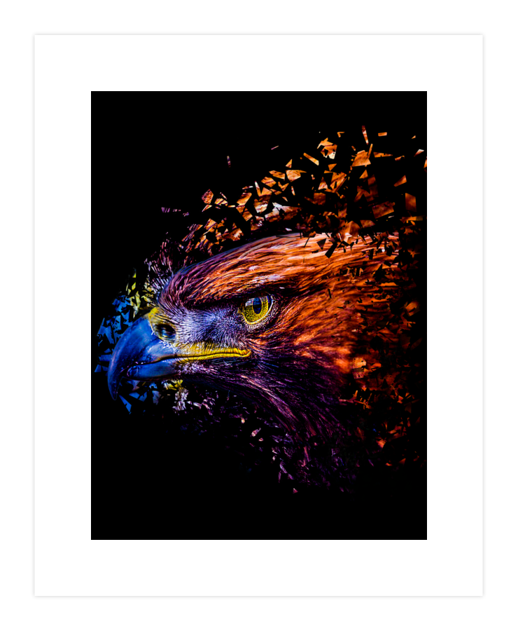 Extinct Eagle Art Print