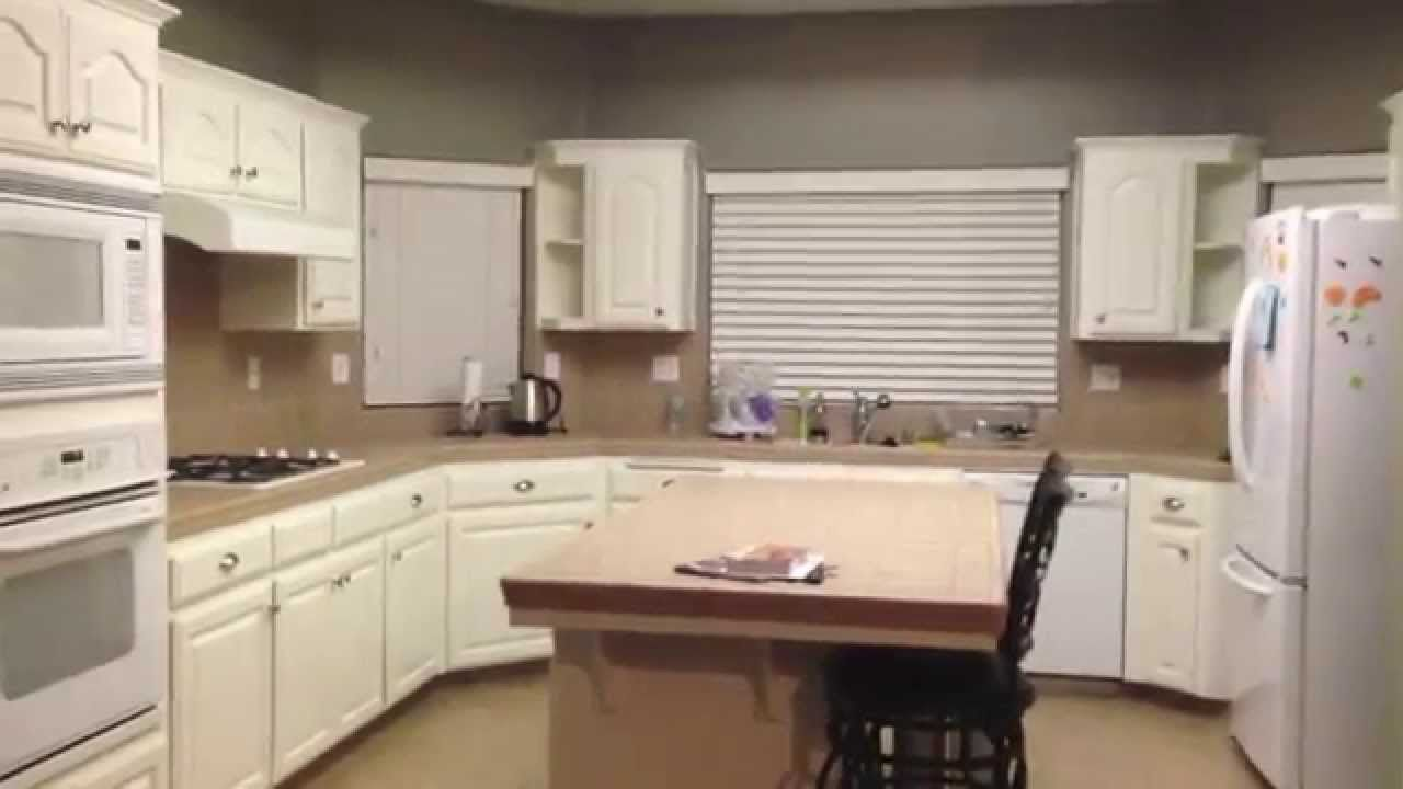 Diy Painting Oak Kitchen Cabinets White  Kitchen Remodel Beauteous Repainting Oak Kitchen Cabinets Review