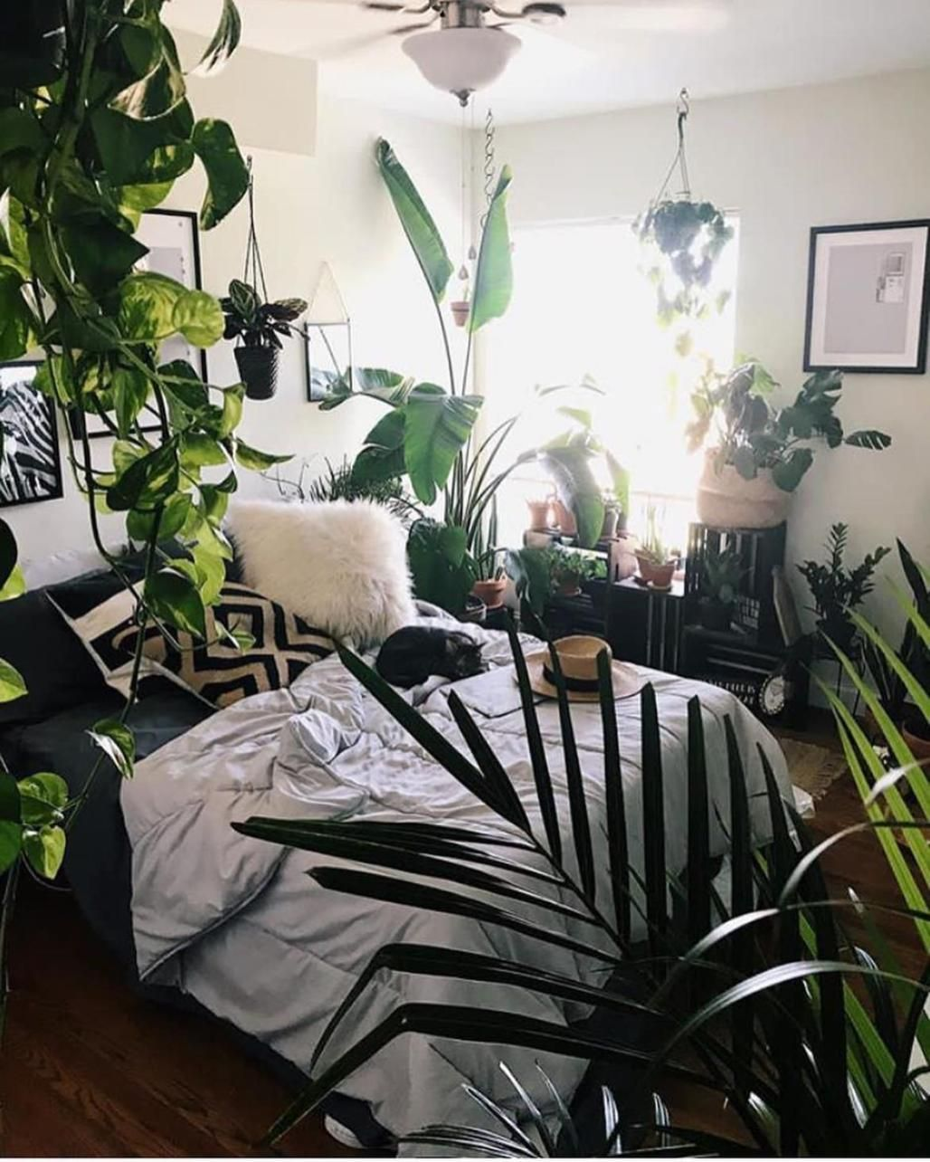 38 Stunning Urban Jungle Room Decor That Will Make Your Home More Cozy Decor Renewal Jungle Room Decor Earthy Home Decor Room Decor Urban jungle bedroom ideas