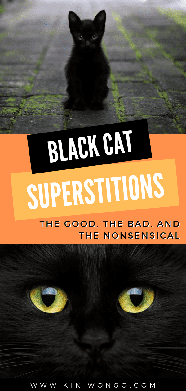 Black Cat Superstitions the Good, the Bad, and the