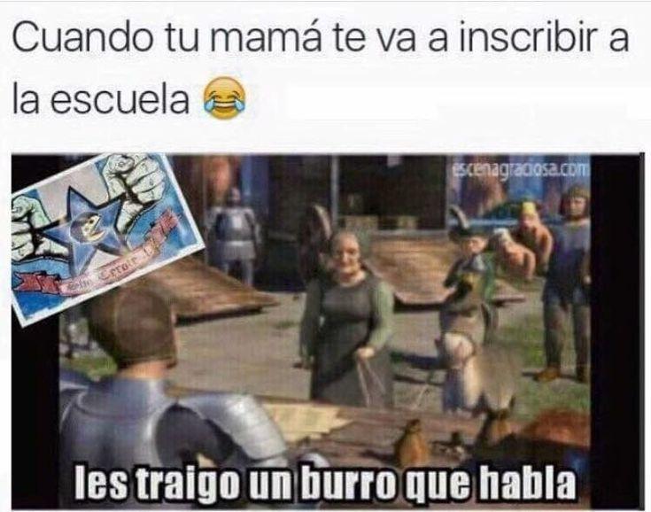 Funny Shrek Memes In Spanish Chistesgraciosos Chistesmalos Imagenesgraciosas Memesdivertidos Memes Mexican Funny Memes Funny Spanish Memes Spanish Memes