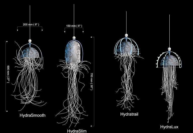 Jellyfish Chandeliers CCC Ltd