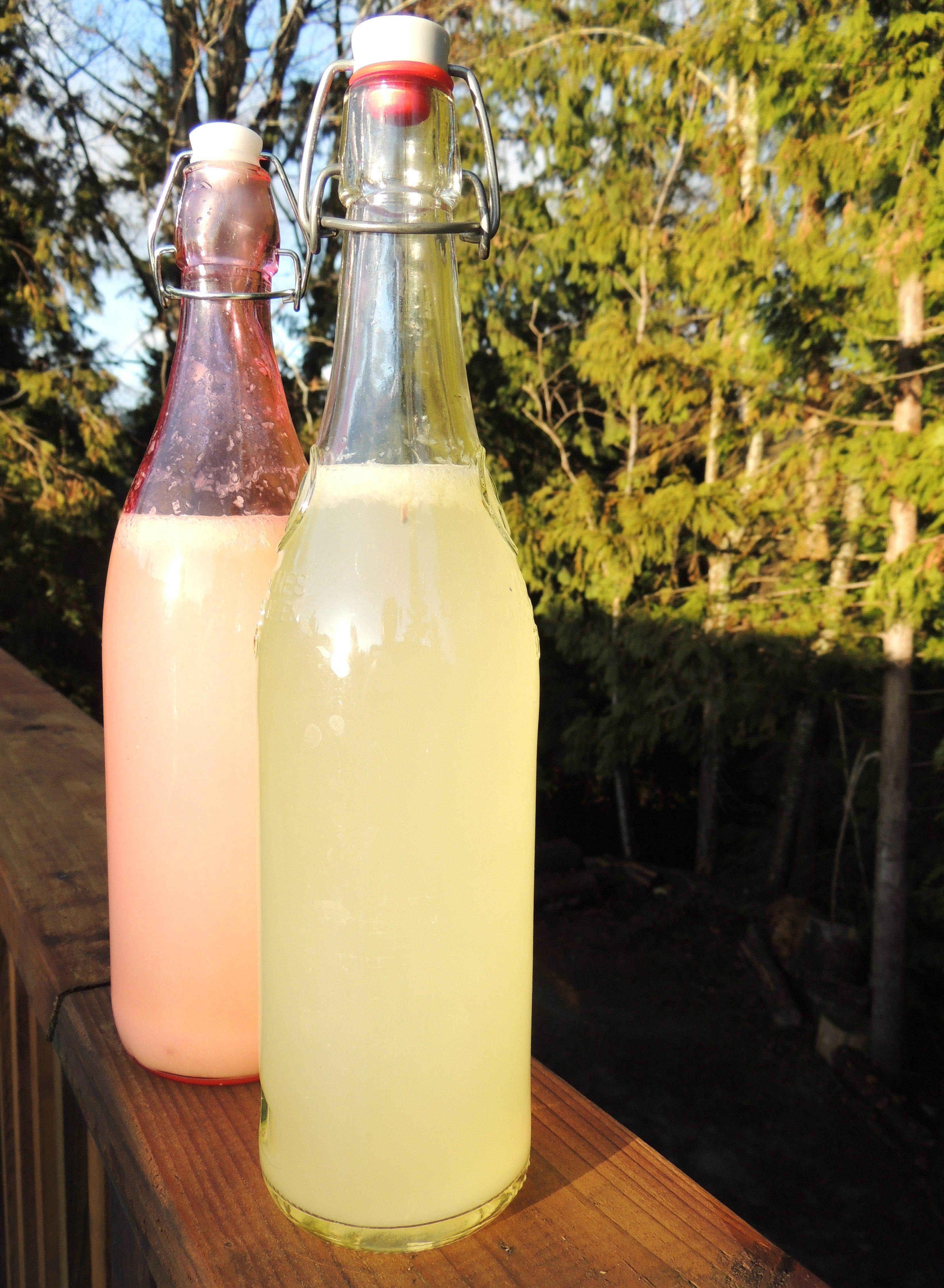 Grolsh-Style Bottles
