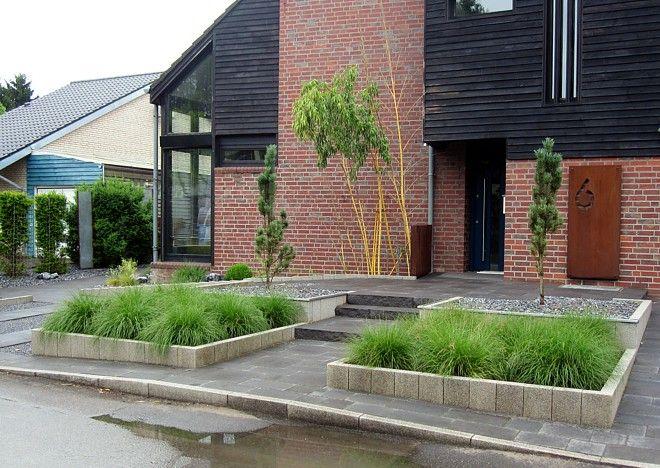 Vorgartengestaltung mit Gräsern, Bambus und säulenförmigen Bäumen ...