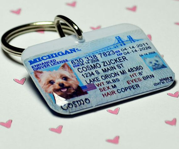 Cute Tags: Pet ID Tags Michigan Driver License By ID4Pet On Etsy, $25
