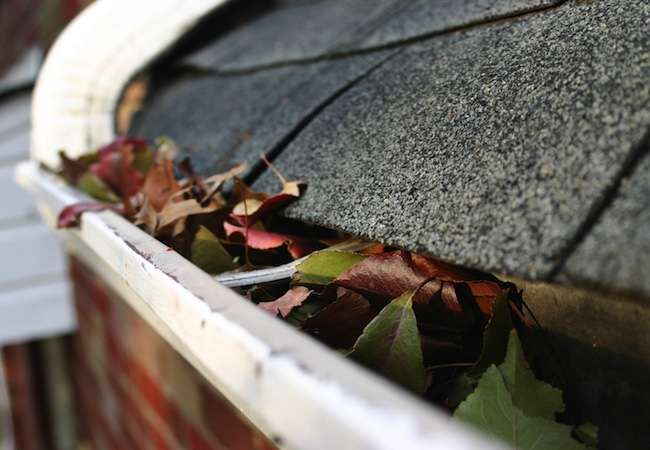 6 Mistakes Homeowners Make Every Summer Cleaning Gutters Seamless Gutters Gutters