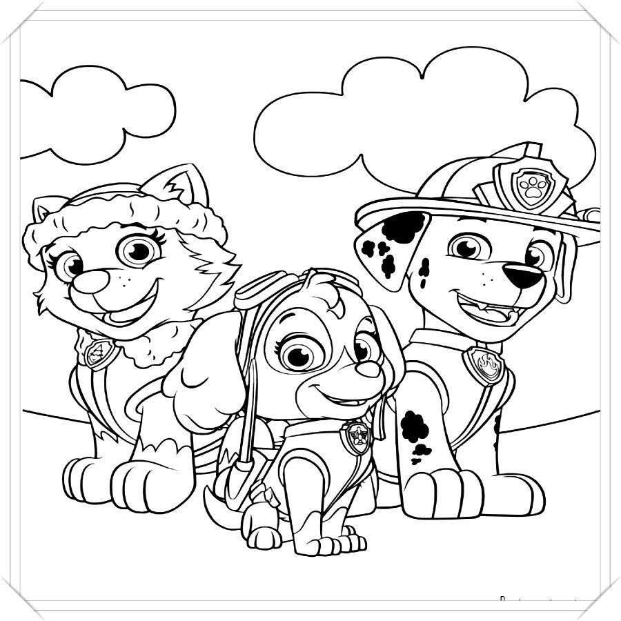 Los Mas Lindos Dibujos De Patrulla Canina Para Colorear Y Pintar A