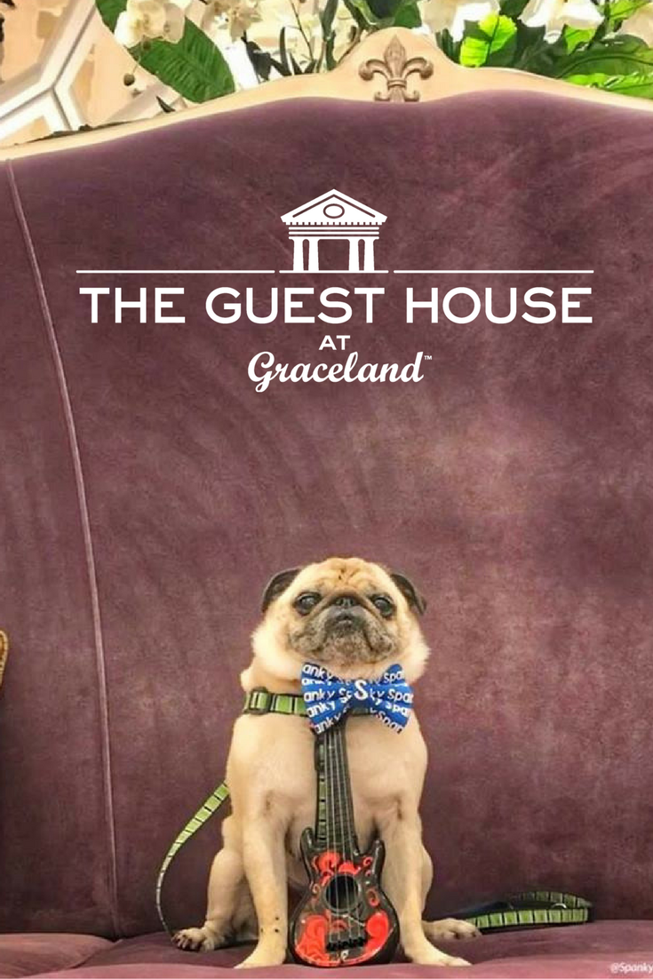 Official Graceland Hotel Resort The Guest House At Graceland Graceland Guest House Pet Friendly