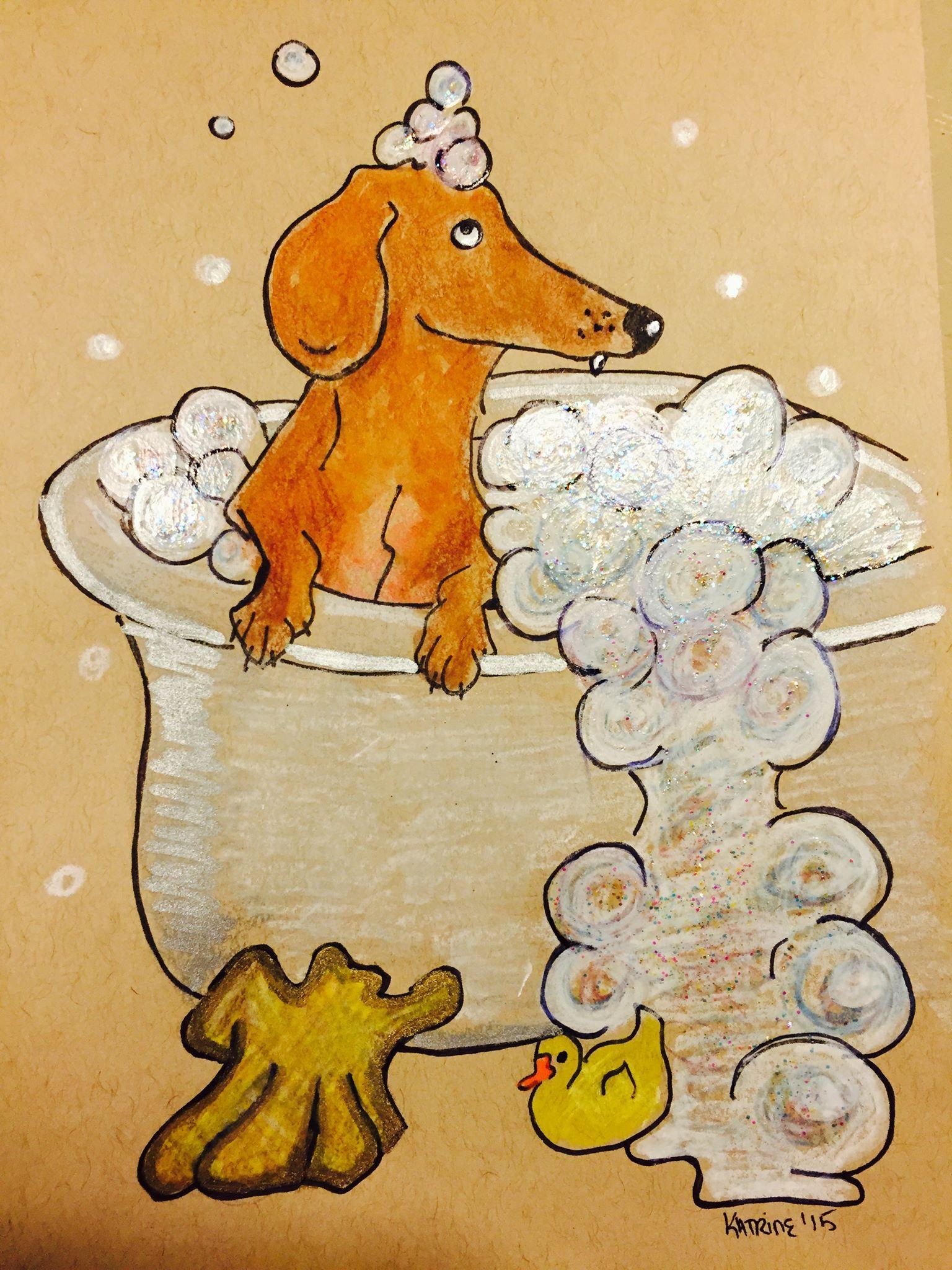 Dachshund In Bathtub In Bathroom Art Illustration Drawing Sausage
