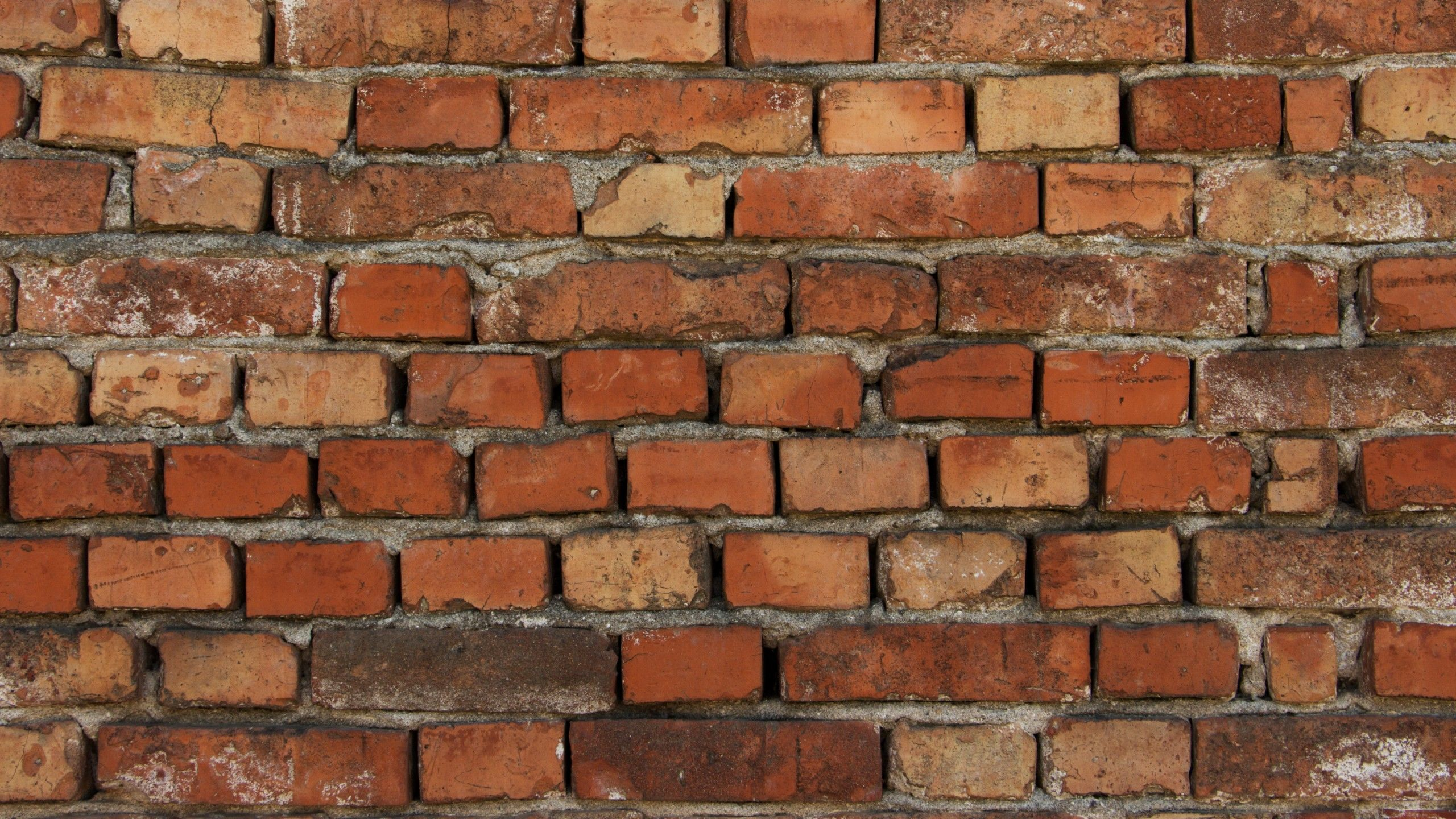 Old Brick Wall 2560 X 1440 Preview Wallpaper Old Brick Wall Brick Wall Brick