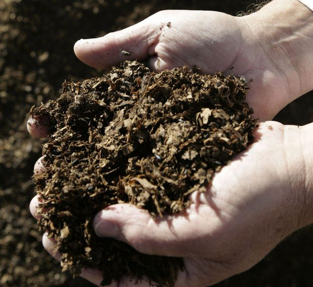 Compost Happens: Tips To Start A Pile And Keep It Humming