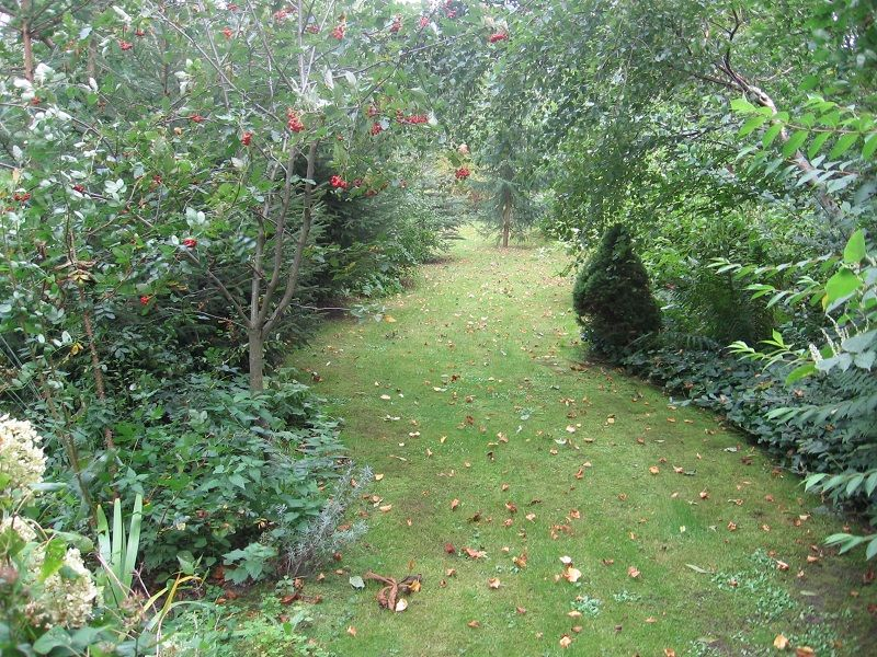 Ein Rasenweg Zieht Durch Unseren Garten Www Dachstuebchen Net Garten Garten Ideen Dekoration