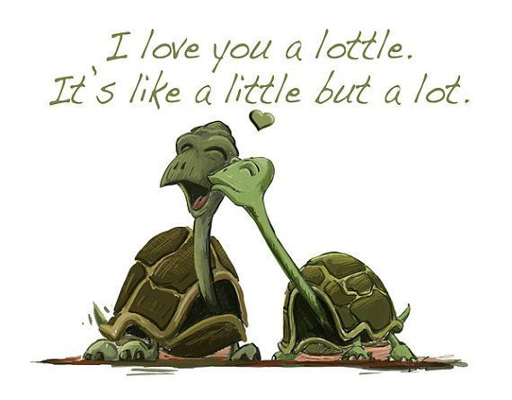 My friends   Turtle quotes, Turtle love, Clearwater marine ...  Turtle Love Sayings