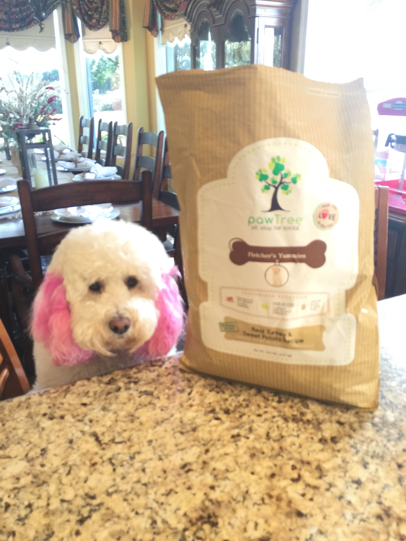 London loves pawtree dog food she will not eat any dog