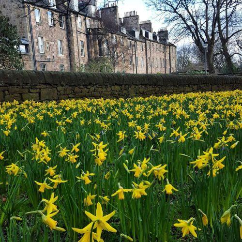 Edinburgh, Scotland by thisisedinburgh