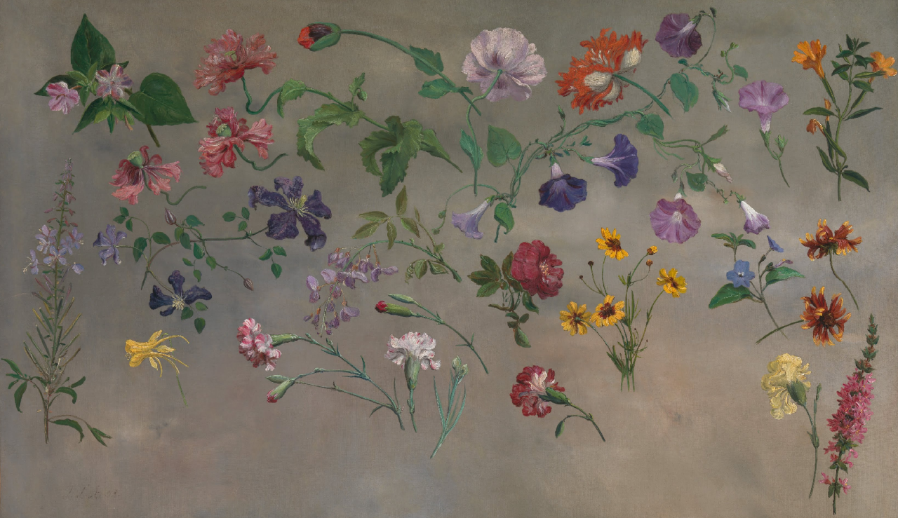 Jacques-Laurent Agasse, Study of Flowers 1848 /  Yale Center for British Art