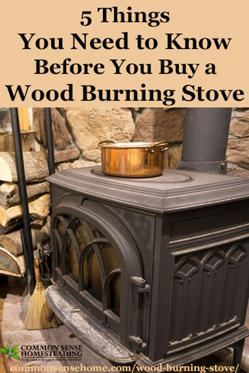5 Things You Need To Know Before You Buy A Wood Burning Stove Wood Burning Stove Wood Heat Wood Stove Fireplace
