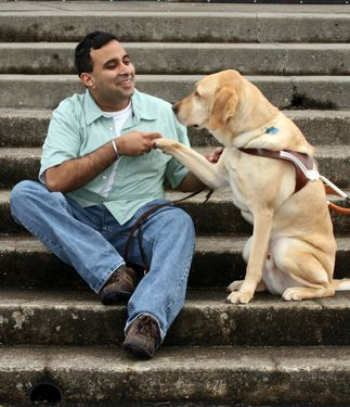 Guide Dogs For The Blind Gifts Guide Dog Service Dogs Dogs