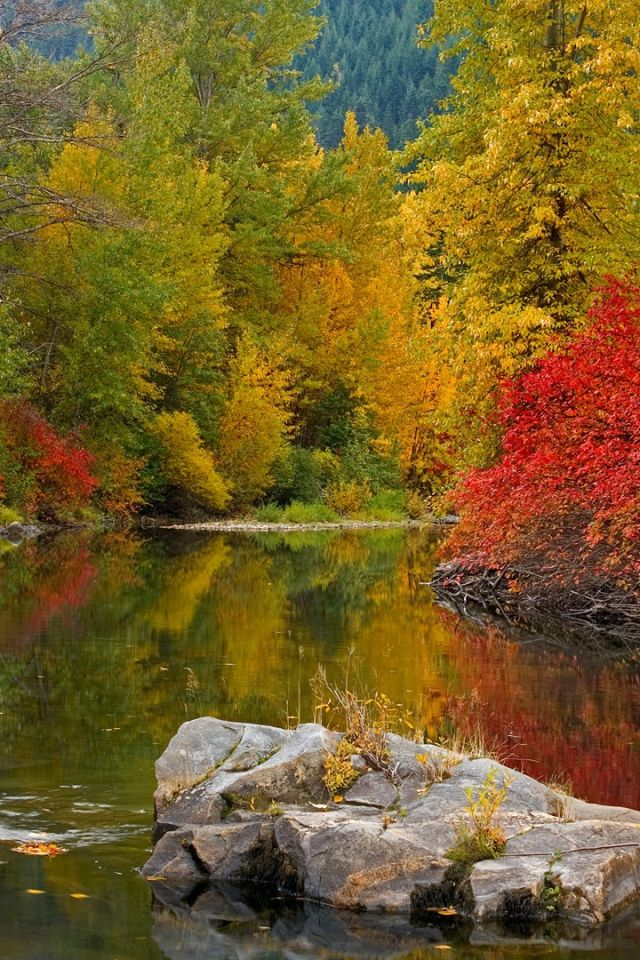 Pin by Jody Raines on Creeks, Waterfalls, Ponds in Nature