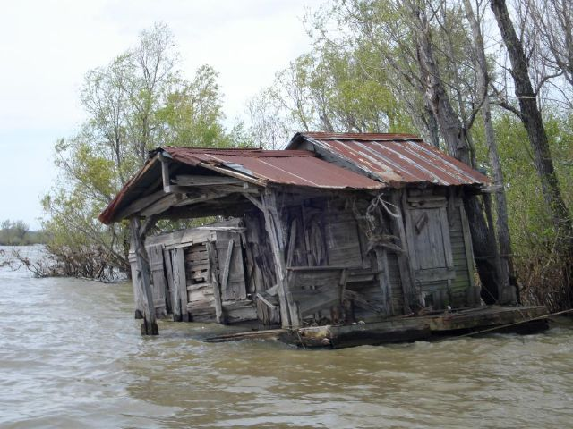 atchafalaya swamp cabins old fishing cabin 39 photo from