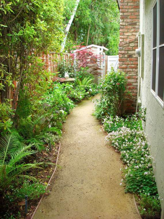 Landscape Ideas For Long Narrow Front Yard Side Yard