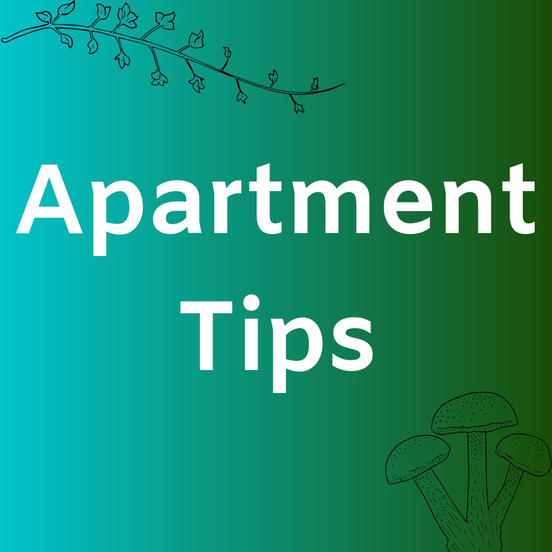 Pin by Amanda McColgan   Enfield Arts on Apartment Tips ...