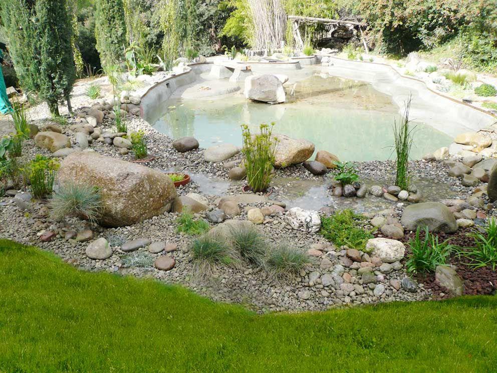 Parquizaci n de los exteriores del estanque se realiza un for Lagunas artificiales para jardin