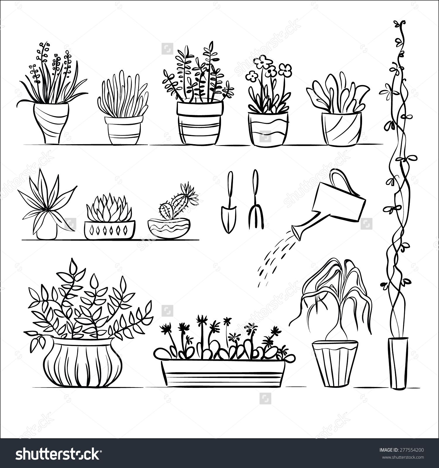 Pot plants and tools sketch. Hand drawing set, gardening ...