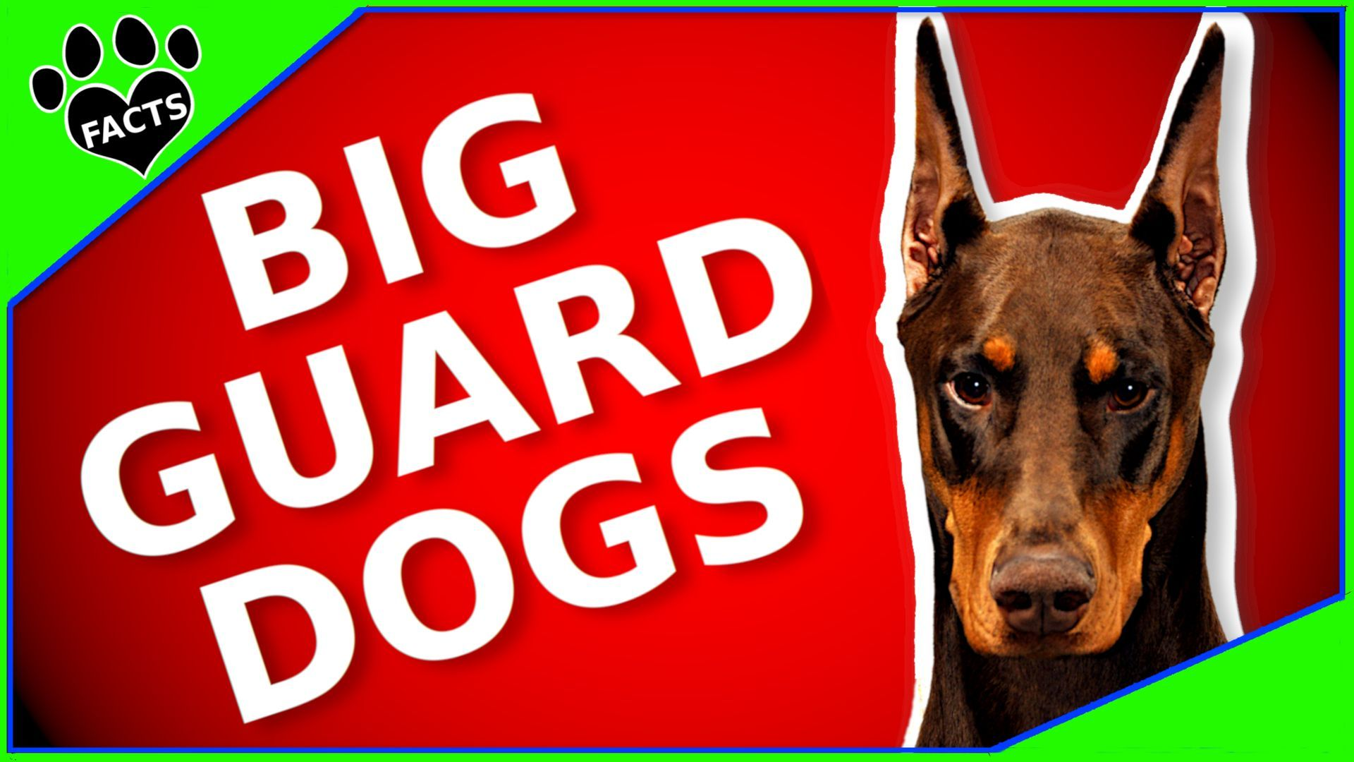 Dog Training Tips Dogtrainingtips Guard Dog Breeds Dog Breeds