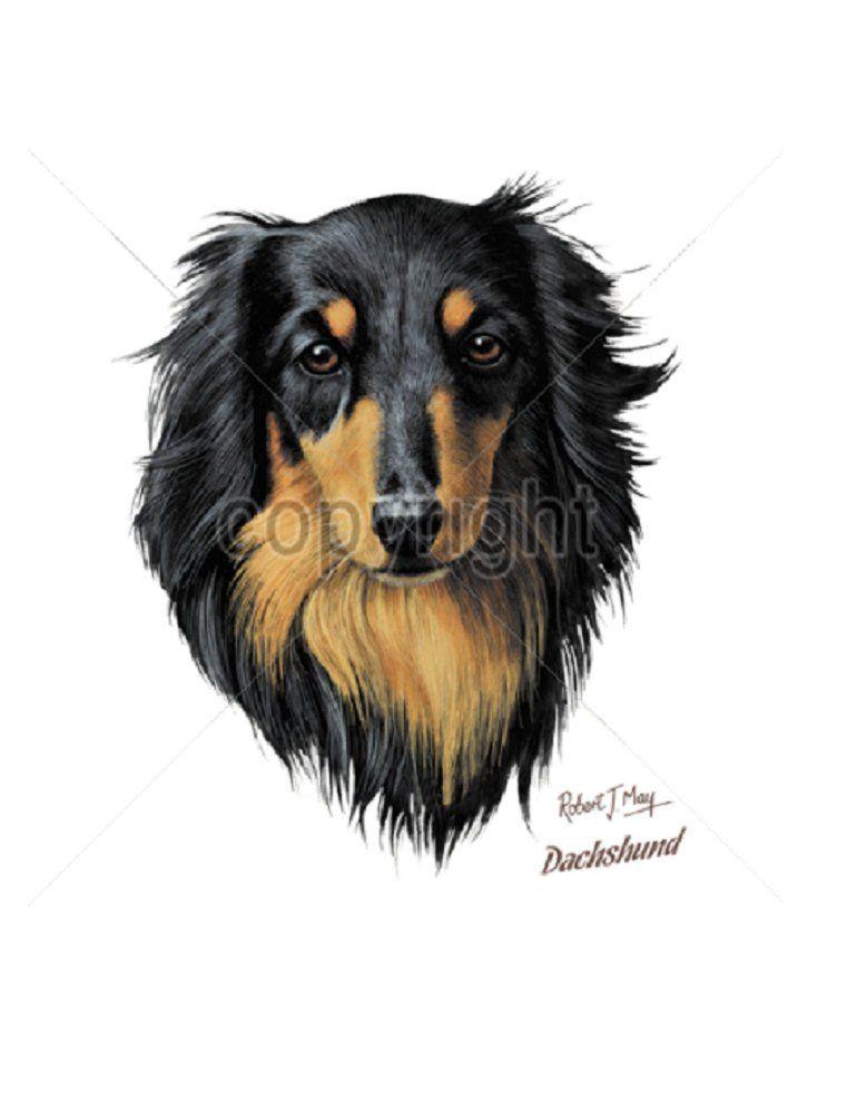 Dachshund T Shirt Long Hair Black Tan Dachshund Dog Quilt