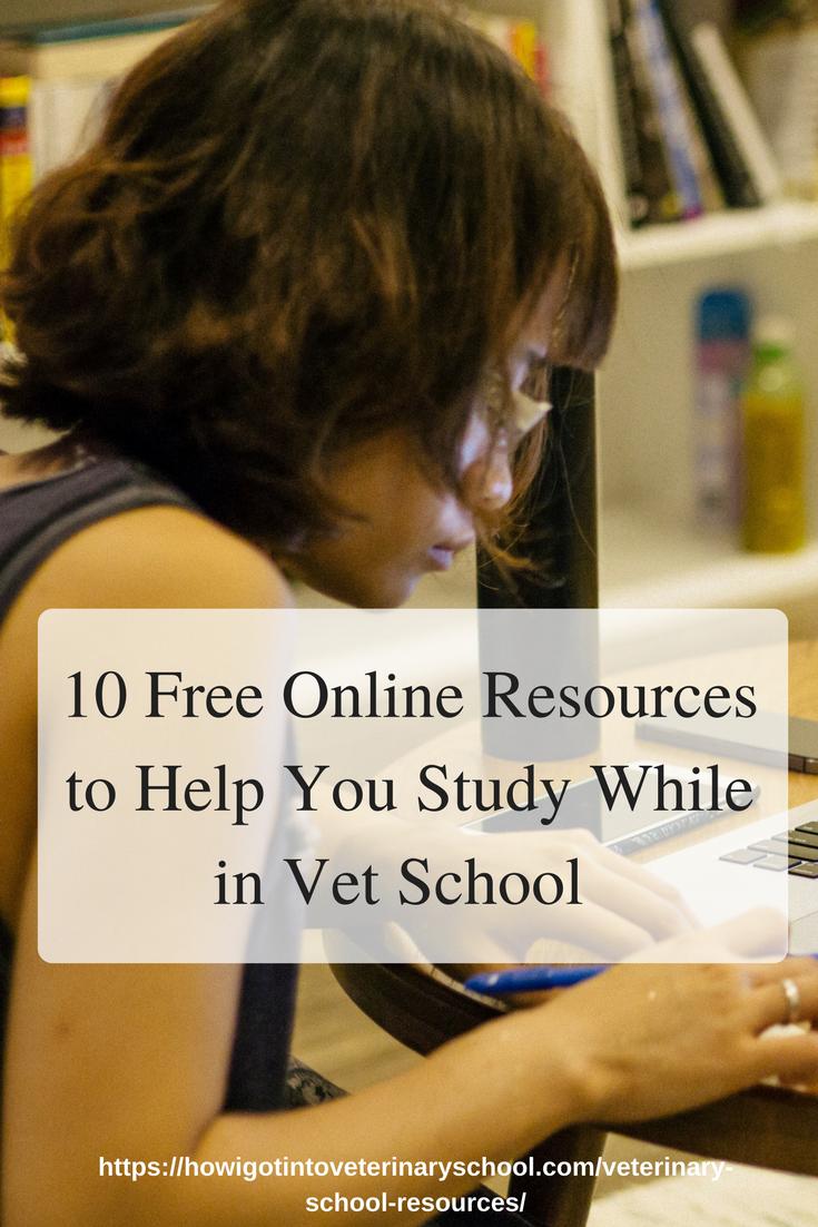 10 Free Online Tools to Make Life in Vet School Easier
