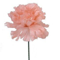 Case of 100 peach pink carnation bulk cheap silk flower picks5 case of 100 peach pink carnation bulk cheap silk flower picks5 mightylinksfo