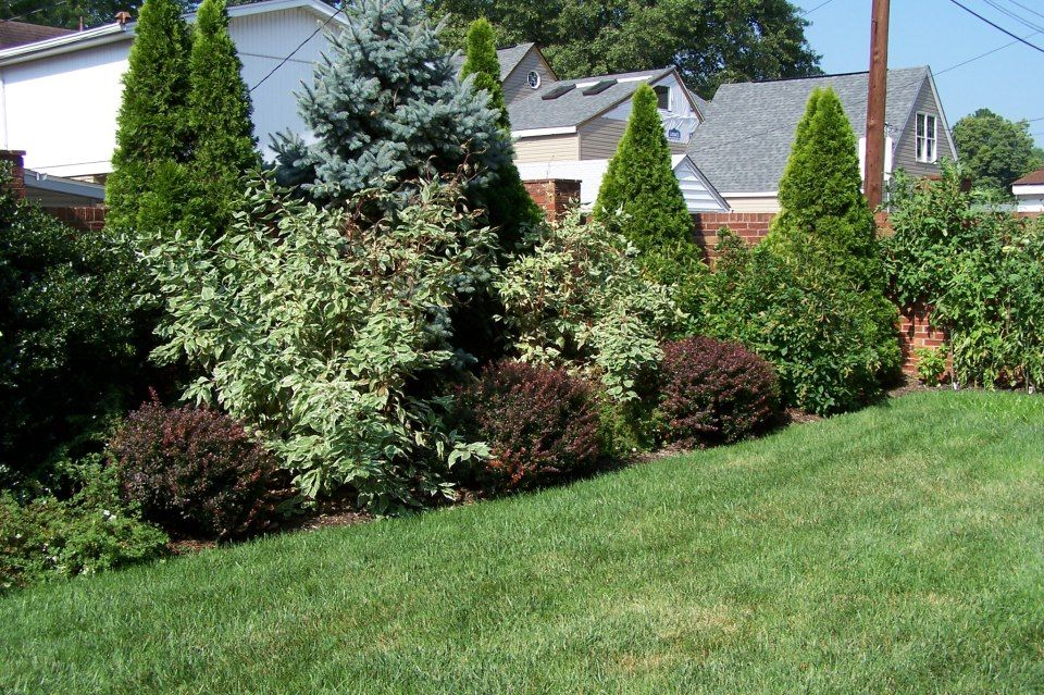 pin future garden landscaping