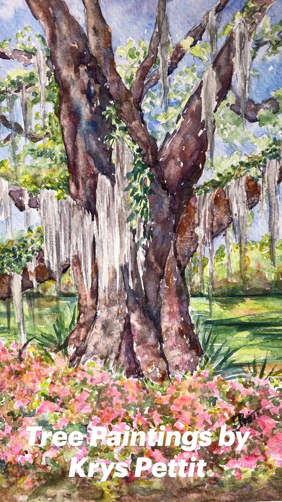 Tree Paintings by Krys Pettit
