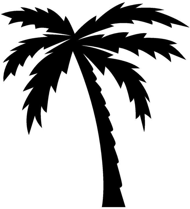 Palm Tree Clipart Black And White Black And Whit Palm Tree
