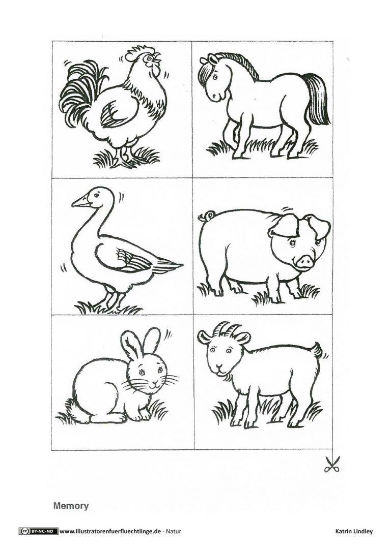 Bauernhof Memo Spiel Tiere  Bauernhof tiere, Bauernhof, Tiere