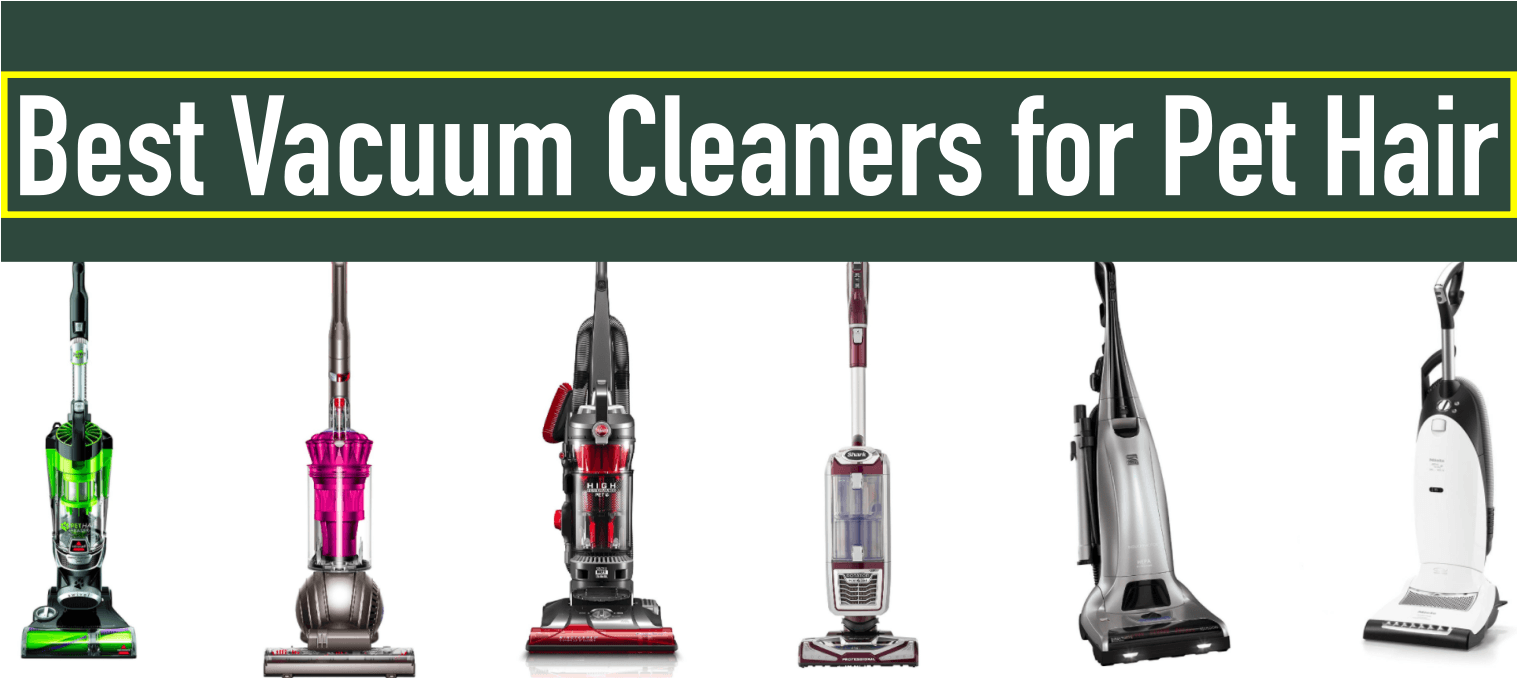 Best Hoover For Dog Hair On Carpet Uk Feels Free To Follow Us Di 2020