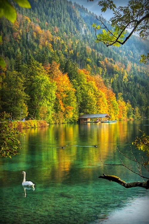 Alpsee, Alemanha- by Cris Figueired♥