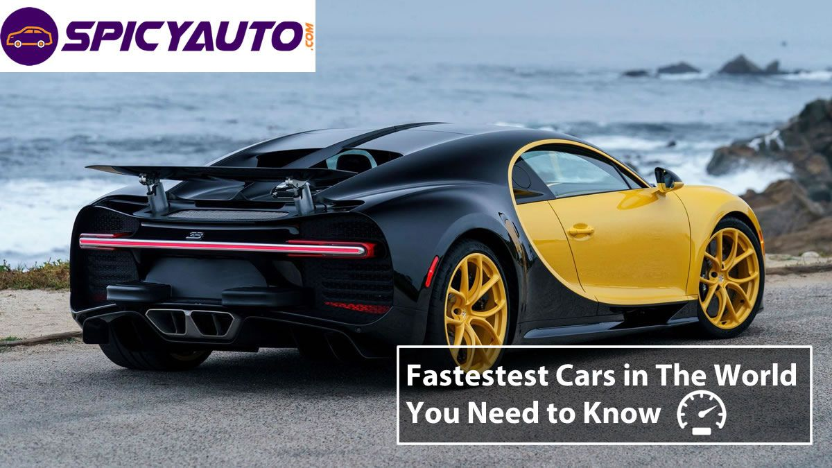 Top 10 Fastest Cars In The World You Need To Know Update 2019 Car In The World Top 10 Fastest Cars Fast Cars