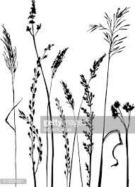 Image result for wildflower silhouette