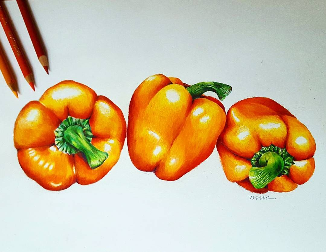 Colored Pencil Art Bell Pepper Drawing Mariettrell