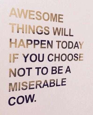 Your choice . . .