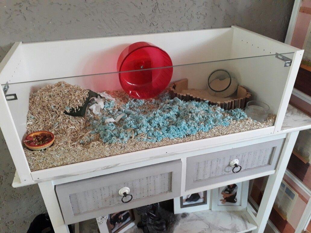 Mijn Hamsterhok Van Een Billy Kast Van Ikea Animals